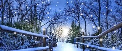 再次推荐一款逼真的下雪效果