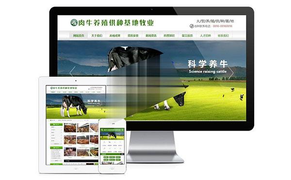 易优cms肉牛养殖供种基地牧业公司网站模板源码 带手机端