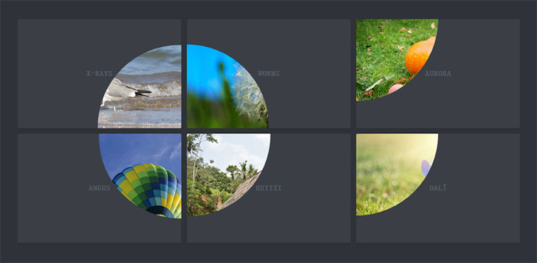 CSS3 SVG放大镜查看图片代码