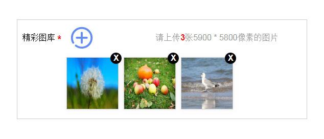 网站特效代码强劲的jQuery多图片上传预览代码