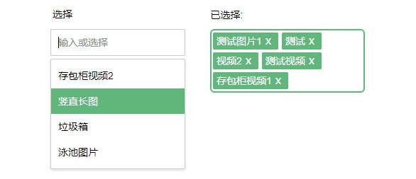 网站特效代码jQuery模拟Select下拉菜单选中添加代码