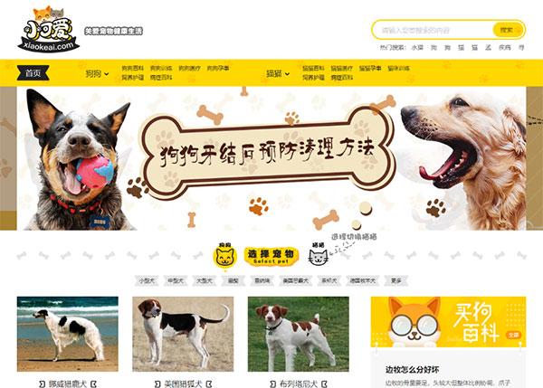 帝国CMS内核仿《小可爱宠物网》宠物资讯平台网站源码完整版+火车头采集+手机版