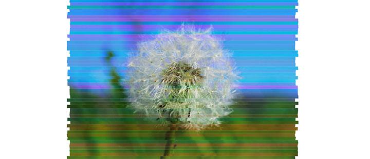 js+css3模拟电视机信号不稳定图像画面故障动画特效