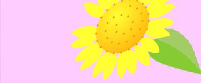 一只向日葵花瓣flash素材