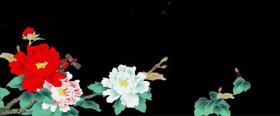 牡丹花,昆虫,嫦娥,星星,多种透明素材集合