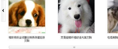 控制图片左右滚动并带滚动条图片展示特效