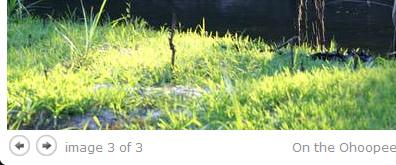 jquery模拟lightbox效果支持照片、照片组、幻灯片、