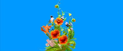 植物中的蝴蝶flash透明素材