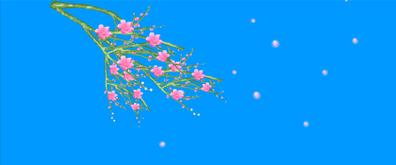 梅花飘落flash透明素材