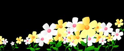 盛开的鲜花flash透明素材