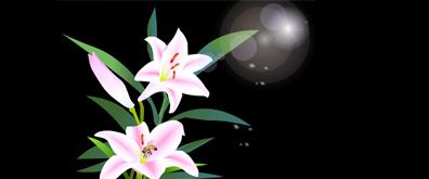 蜜蜂百合花flash透明素材