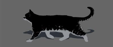 行走的猫儿flash透明素材