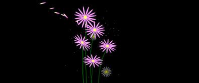 漂亮的菊花flash透明素材