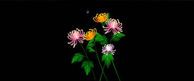 蝴蝶菊花flash矢量素材