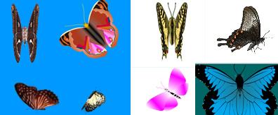 38款原地不动扇动翅膀的蝴蝶flash透明素材集合