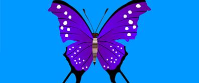 俯视效果下的多款蝴蝶flash透明素材