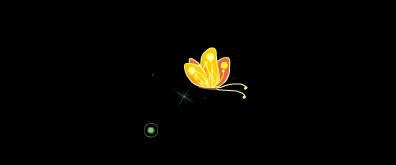 灿烂绚丽的蝴蝶flash素材