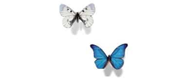 经典flash蝴蝶透明素材