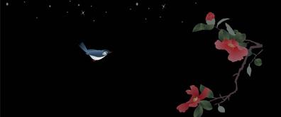 夜空下黄鹂鸟牡丹flash素材