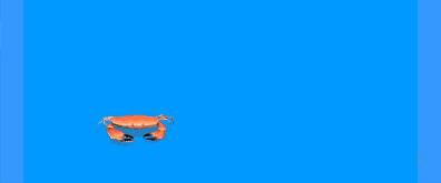 横行霸道的小螃蟹flash素材