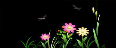 夜空中两只可爱的小蜻蜓flash